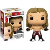 WWE The Heartbreak Kid Shawn Michaels Exclusive Vinyl Figure